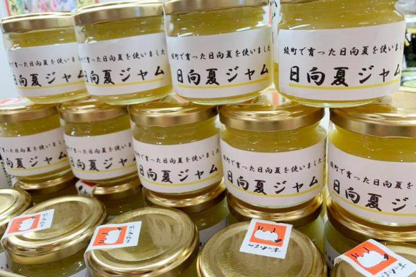 日向夏ジャム (小)430円